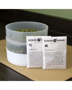 Two Tray Sprouter with Broccoli and Alfalfa Sprouts